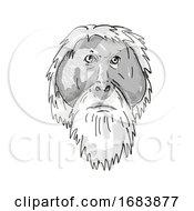 Poster, Art Print Of Tapanuli Orang-Utan Or Pongo Tapanuliensis Endangered Wildlife Cartoon Retro Drawing