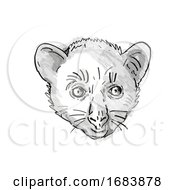 Aye Aye Or Daubentonia Madagascariensis Endangered Wildlife Cartoon Retro Drawing