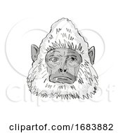 Sri Lankan Gray Langur Monkey Cartoon Retro Drawing