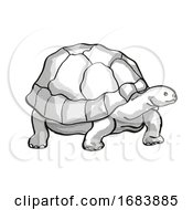 Galapagos Tortoise Or Geochelone Nigra Endangered Wildlife Cartoon Mono Line Drawing