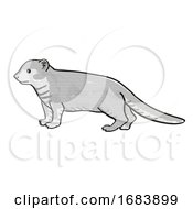 Mongoose Or Helogale Parvula Endangered Wildlife Cartoon Mono Line Drawing