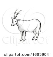 Scimitar Oryx Or Scimitar Horned Oryx Endangered Wildlife Cartoon Mono Line Drawing