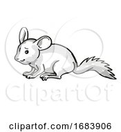 Chinchilla Or Chinchilla Lanigera Endangered Wildlife Cartoon Mono Line Drawing
