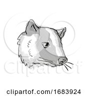 Masked Palm Civet Or Paguma Larvata Endangered Wildlife Cartoon Retro Drawing