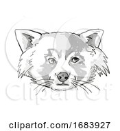 Red Panda Endangered Wildlife Cartoon Retro Drawing