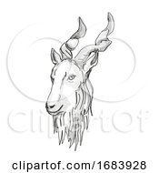 Markhor Endangered Wildlife Cartoon Retro Drawing