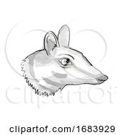 Numbat Endangered Wildlife Cartoon Retro Drawing