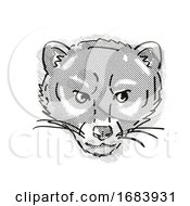 Malayan Civet Or Viverra Tangalunga Endangered Wildlife Cartoon Retro Drawing