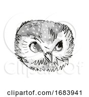 Northern Saw Whet Owl Head Cartoon Retro Drawing