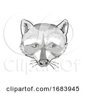 10/13/2019 - Pigmy Raccoon Endangered Wildlife Cartoon Retro Drawing