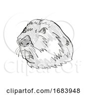 10/13/2019 - Colonial Tuco Tuco Endangered Wildlife Cartoon Retro Drawing