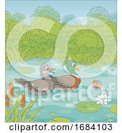 Mallard Ducks on a Pond by Alex Bannykh #COLLC1684103-0056