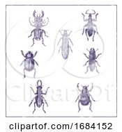 10/15/2019 - Beetles Vintage Collection Duotone On White Background