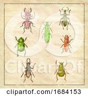 10/15/2019 - Beetles Vintage Collection On Antique Paper