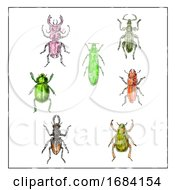 10/15/2019 - Beetles Vintage Collection On White Background