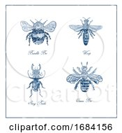 10/15/2019 - Bumble Bee Wasp Stag Beetle And Queen Bee Vintage Collection