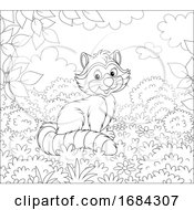 Cute Raccoon by Alex Bannykh #COLLC1684307-0056