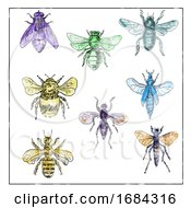 Vintage Bees and Flies Collection on White Background by patrimonio #COLLC1684316-0113