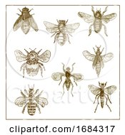 10/19/2019 - Vintage Bees And Flies Collection Duotone On White Background