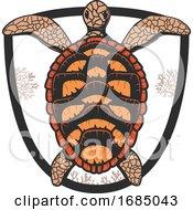 Sea Turtle Shield