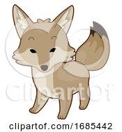 Animal Desert Coyote Illustration