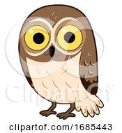 Poster, Art Print Of Animal Desert Elf Owl Illustration