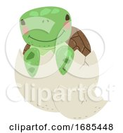 Animal Hatch Egg Turtle Illustration