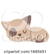 Animal Cat Kitten Sleeping Illustration