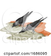 Vector Of Crow Drinking Water