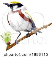 Vector Of Bird Perching On Branch