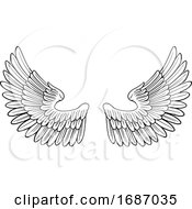 Pair Of Angel Or Eagle Bird Wings