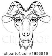 Goat Head Portrait Cartoon Retro Drawing