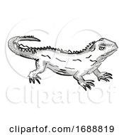 Tuatara New Zealand Wildlife Cartoon Retro Drawing