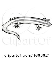 Alborn Skink New Zealand Wildlife Cartoon Retro Drawing