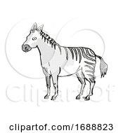 Hagerman Horse Extinct North American Wildlife Cartoon Drawing