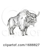 Poster, Art Print Of Ancient Bison Extinct North American Wildlife Cartoon Drawing