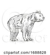 Short Faced Bear Extinct North American Wildlife Cartoon Drawing