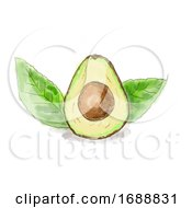 Haas Avocado Fruit With Leaves Watercolor
