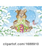 Bear With A Gift In The Snow