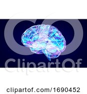3d Brain Xray On A Blue Background