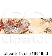 Seashell Banner