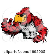 Muscular Red Cardinal Bird Mascot by Chromaco