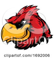 Red Cardinal Bird Mascot Face by Chromaco #COLLC1692006-0173