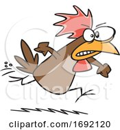 Cartoon Irate Chicken