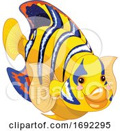 Cute Angelfish Marine Fish