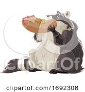 Poster, Art Print Of Fat Raccoon Eating A Hot Dog