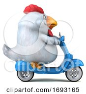 3d Chubby White Chicken Riding A Scooter On A White Background
