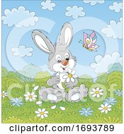 Spring Time Rabbit With Flowers