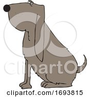 Cartoon Sitting Bloodhound Dog