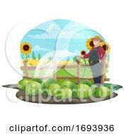 Cabbage Farmer Watering Plants
